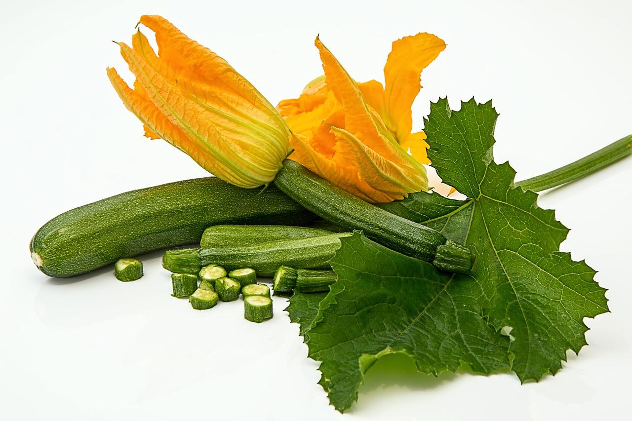 zucchini pflanzen im garten
